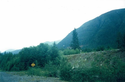 Misty Northern Vancouver Island