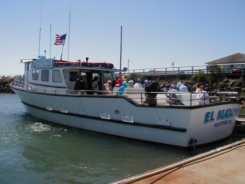Ocean Shores to Westport Ferry