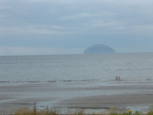 Ailsa Craig in the Mist