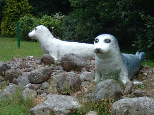 Seal Sanctuary