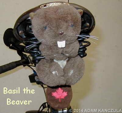Basil the Beaver