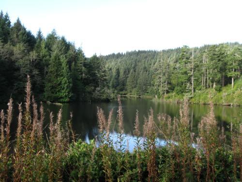 Clear Lake south of Reedsport