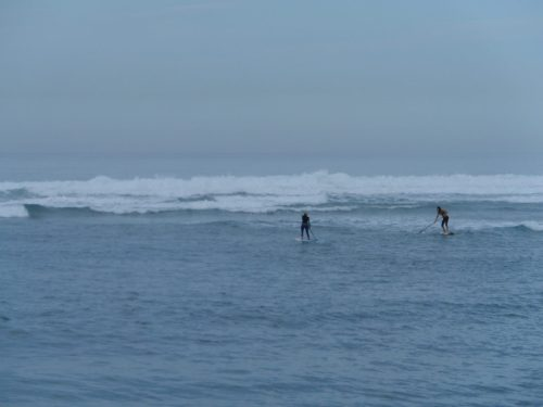 Paddle Boarders Braving the Surf