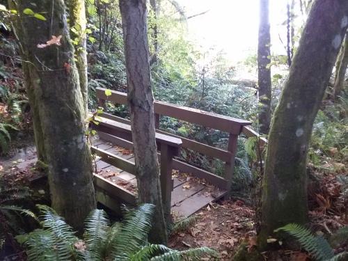 Convenient Bridge