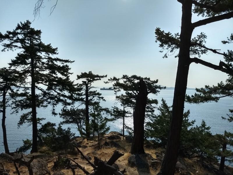 Haro Strait from Echo Bay Headland