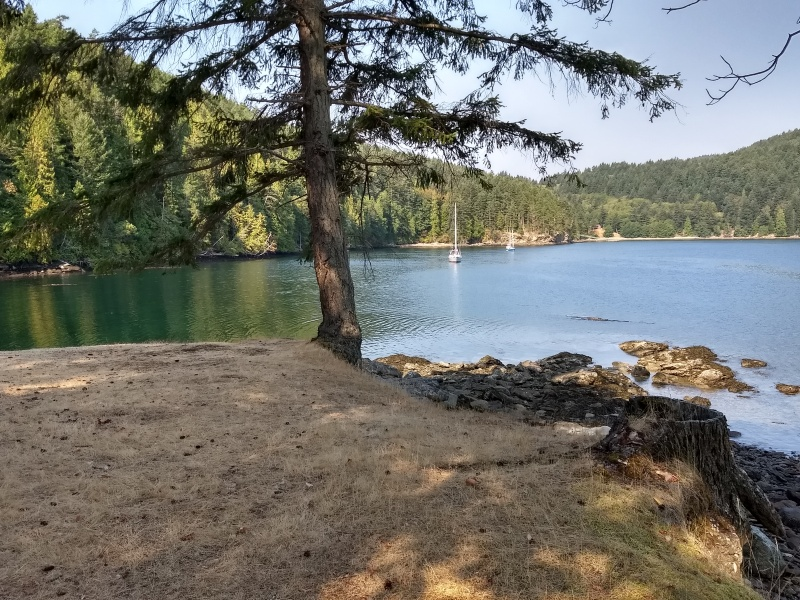 Narvaez Bay