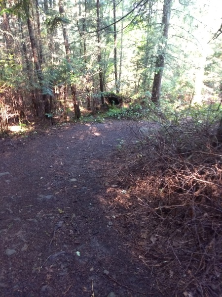 Easy but Steep Trail