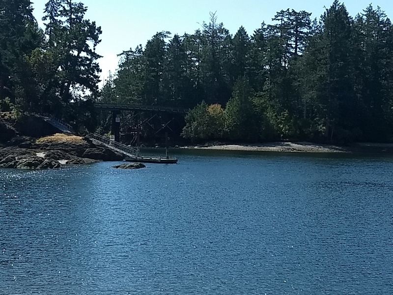 Bridge Viewed from Mortimer Spit Park