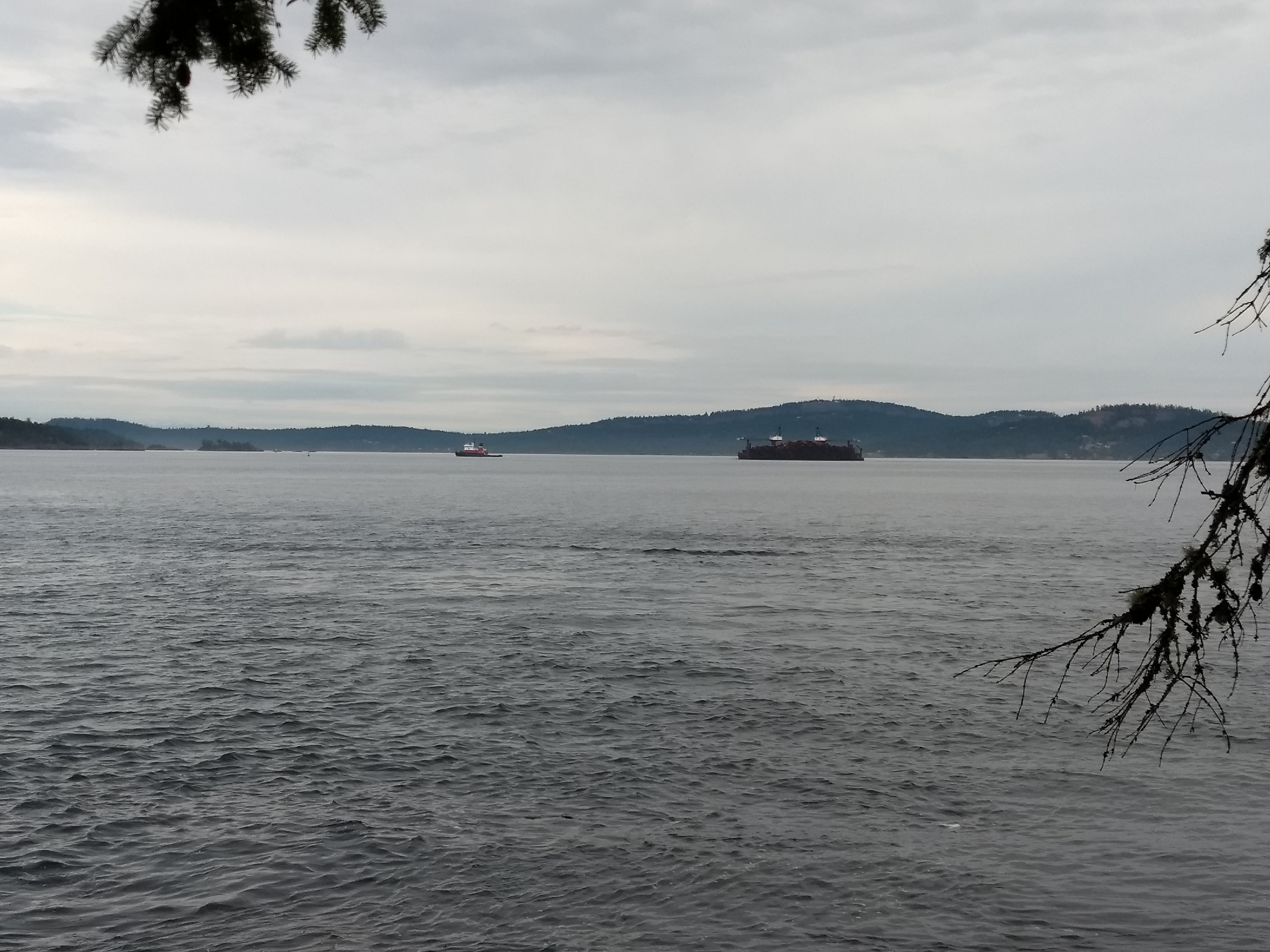 Tug & Barge View