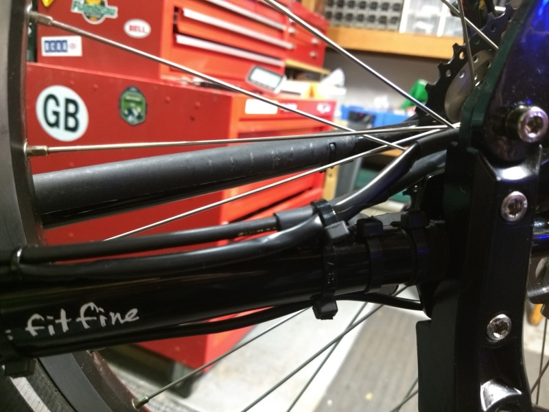 Wiring on Chainstay