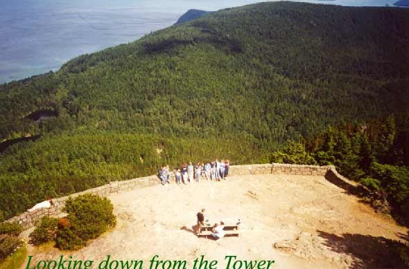 View from the Top of the Tower